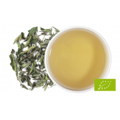 PEPERMINT -  zelený čaj